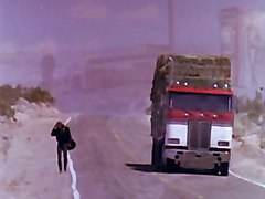 Hottie Banged On Highway