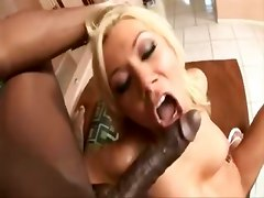 Sexy Bitch Compilation
