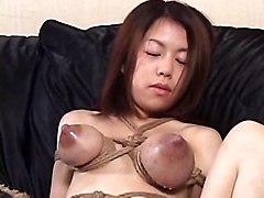 Bond Tits Lactation And Breastfeading By Spyro1958