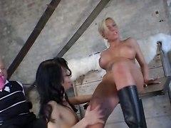Busty Lesbians Stuff Their Vaginas