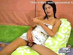 Asian Ladyboys Wanking Compilation